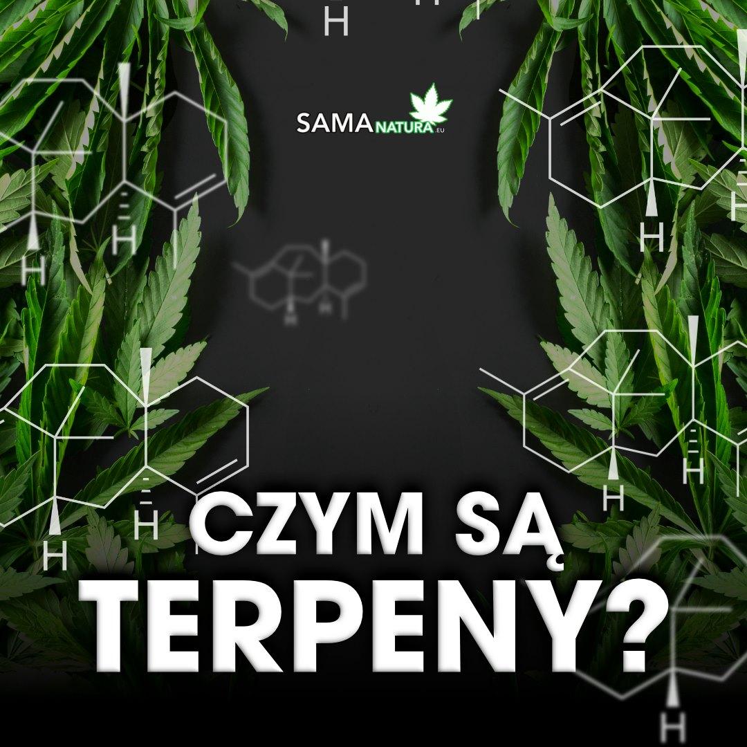 Terpeny 💧