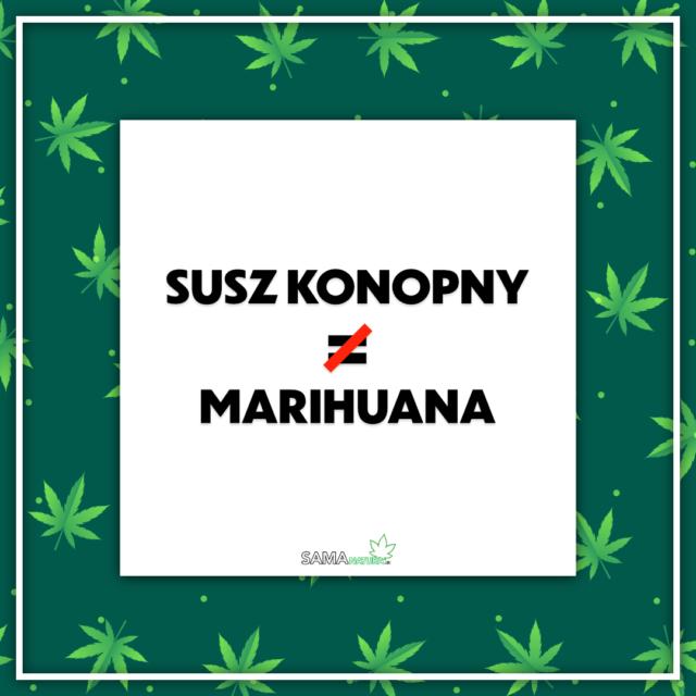 Susz konopny to nie marihuana